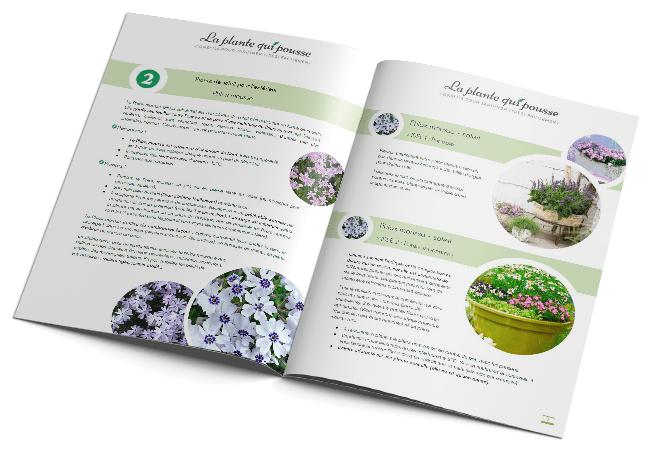Guide-3-plantes-qui-poussent