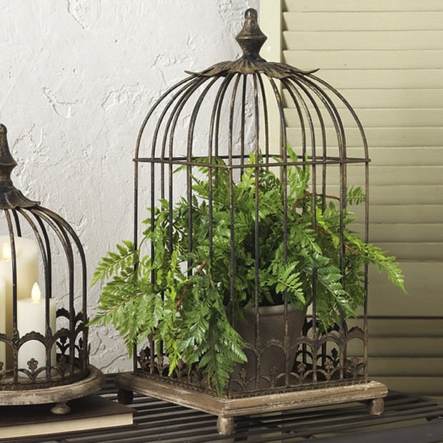 cage-oiseau-decorative-vintage-fougere-interieur