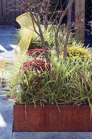 Chrysanthèmes rouges et jaunes en bacs corten avec graminées