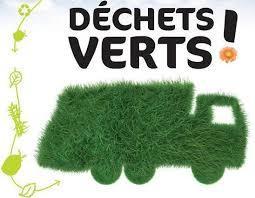 feuilles mortes collecte déchets verts