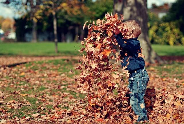 feuilles mortes enfant jeu