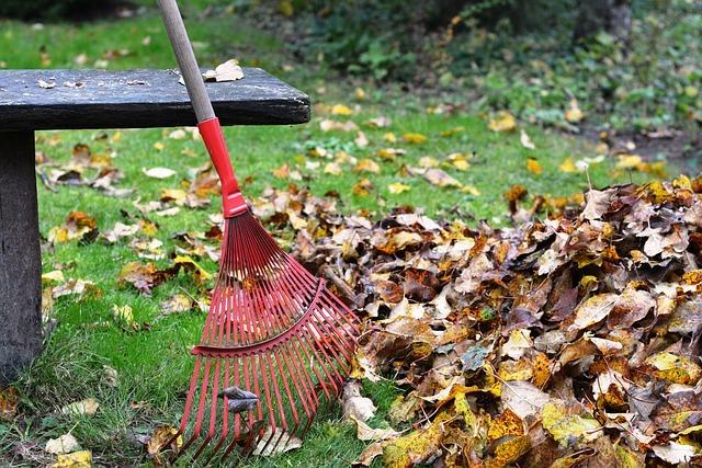 rateau à feuilles mortes pelouse banc automne