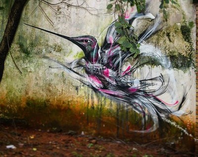 street art Lm7 Sao Paolo colibri