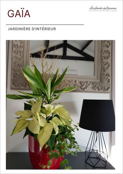 DIY idée de décoration florale avec des poinsettias pour Noël, les fêtes de fin d'année ou pour un cadeau original et personnalisé avec des plantes