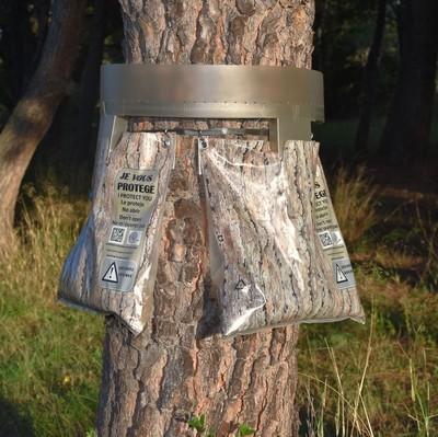 Chenilles processionnaires du pin: posez un écopiège double descente si le nombre de nid dépasse un certain nombre. Lisez l'article pour en savoir plus.