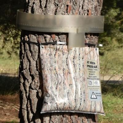 L'écopiège pour chenilles de processionnaires du pin (La Mésange Verte) est un dispositif de piégeage mécanique très efficace. Découvrez comment le poser correctement. Pour en savoir plus sur les 7 manières d'éliminer cet insecte dangereux pour l'homme et les animaux, lisez l'article sur le blog!