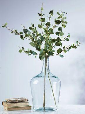 Bouquet de branches d'eucalyptus à feuilles rondes dans une bonbonne vase transparent