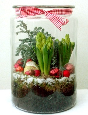 DIY: Terrarium de noël avec des jacinthes, branche de sapin et boules de noël. Découvrez comment faire pousser et fleurir des jacinthes à l'intérieur pour Noël et les fêtes, sur le blog La Plante Qui Pousse.com