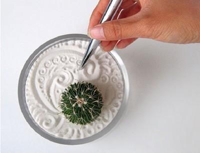 mini jardin zen dans un bol avec un cactus et du sable blanc