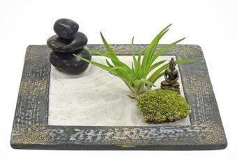 mini jardin zen intérieur avec une statue de Bouddha