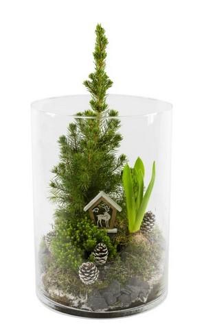 DIY: réalisez très simplement une décoration pour noël en faisant fleurir des jacinthes à l'intérieur. Ici, un terrarium de jacinthe, de mousse et de picea. Lisez l'article sur le blog