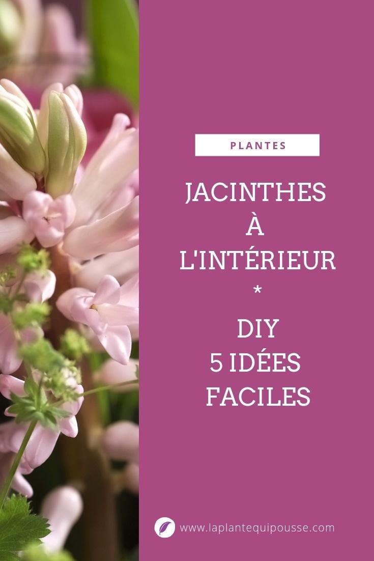 DIY: 5 idées simples pour des fleurs de jacinthes à l'intérieur: hydroponie, galets, terrarium, pot et bouquets. Découvrez comment choisir les bons bulbes et les comment les forcer pour une floraison à l'intérieur. Lisez l'article sur le blog pour une déco réussie :)