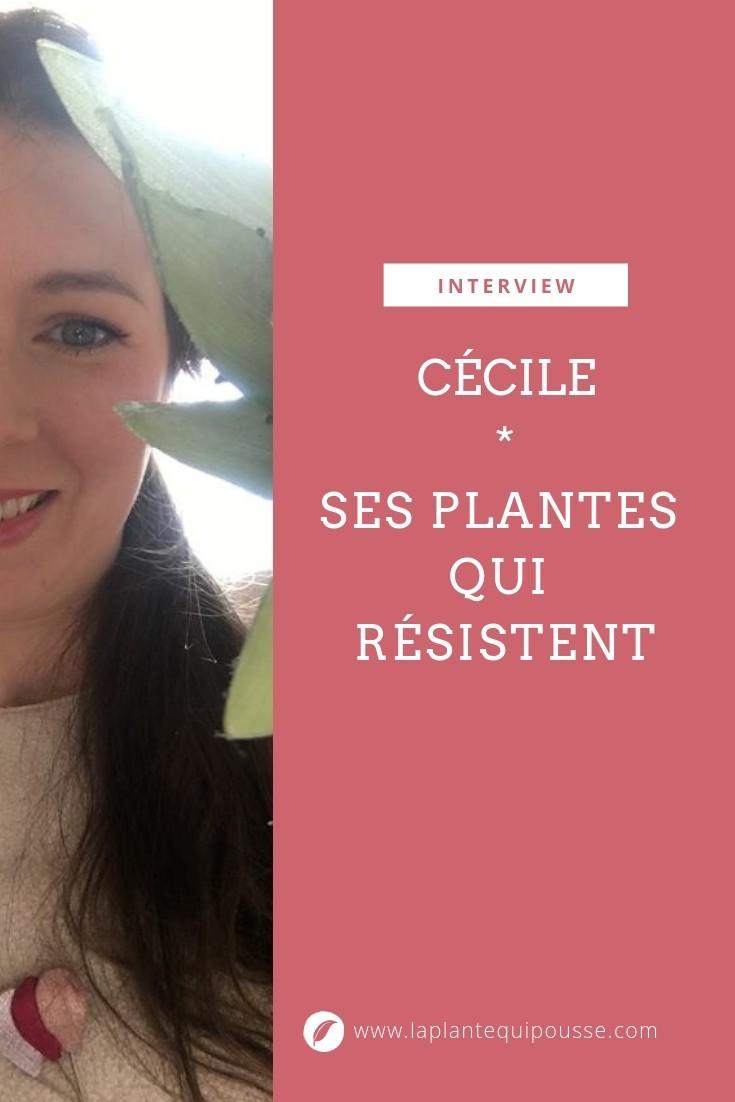 Découvrez le portrait de Cécile, une maman jardinière débutante sans complexe! Ses plantes résistantes et faciles d'entretien doivent lui survivre!