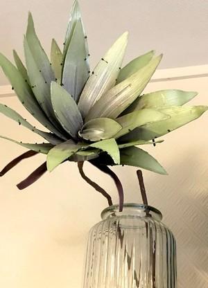 La plante increvable de Cécile, une plante en plastique dans un pot en verre! Découvrez les astuces de Cécile, une maman qui jardine sans contrainte.