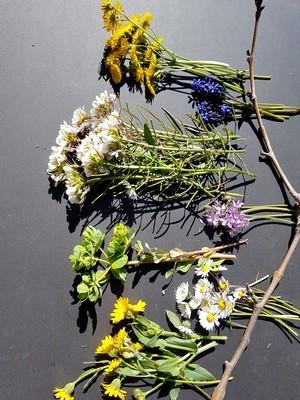 DIY: déco de fleurs pour Pâques, dans des vases en coquilles d'oeufs. Cueillette du jour. Rdv sur le blog pour le tuto!