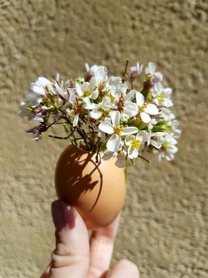DIY fête de Pâques: des vases en coquilles d'oeuf. Simple, facile et rapide à réaliser. Lisez l'article du blog!