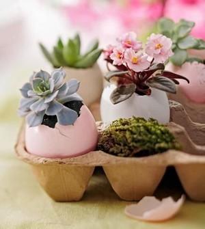 DIY déco de Pâques: des mini plantes dans des pots en coquilles d'oeufs. RDV sur le blog!