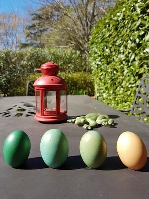 DIY teindre les oeufs de Pâques avec des colorants alimentaires: nuances de bleu vert. Rdv sur le blog!