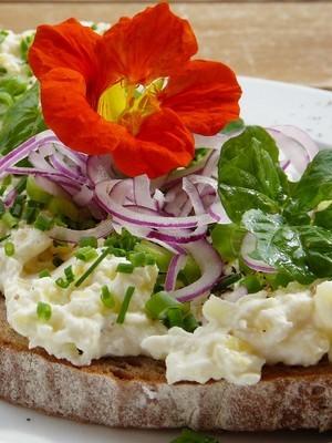 Idée pour consommer les fleurs de capucines: elles se mangent! Lisez l'article du blog pour en savoir plus.