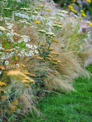 Mixed borders dans un jardin anglais. Découvrez les principes du jardins à l'anglaise. Ce style est-il pour vous? En savoir plus sur le blog.