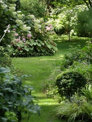 Massif ou island bed dans un jardin anglais. En savoir plus sur ce style de jardin: lisez l'article sur le blog!