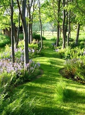 Entretien et conception d'un jardin à l'anglaise: est-il fait pour vous? Lisez l'article du blog