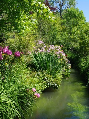 Magnifique mixed border le long d'un ruisseau, typique du style de jardin anglais. Lisez l'article du blog pour en savoir plus.