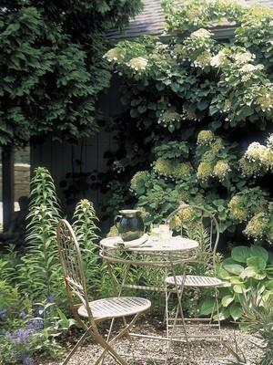 Style de jardin: jardin à l'Anglaise, dans une petite surface. Découvrez tout sur ce style de jardin sur l'article du blog.