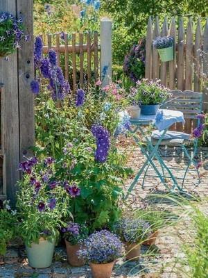 Jardin anglais style cottage sur une petite surface. Découvrez l'essentiel des jardins à l'anglaises sur le blog.