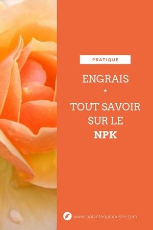 Engrais: que signifie NPK, comment choisir le bon engrais? Lisez l'article du blog pour tout savoir sur les engrais.