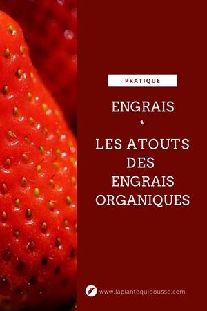 Pourquoi choisir les engrais organiques au jardin (fleurs, pelouse, potager...)? Découvrez tout sur les engrais, décryptez les étiquettes: lisez l'article sur le blog.