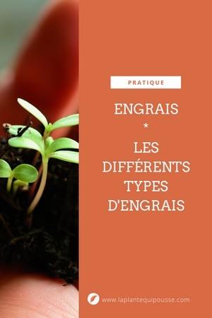 Comprendre les engrais: découvrez les différents types d'engrais, leurs avantages et inconvénients. Lisez l'article détaillé sur le blog.