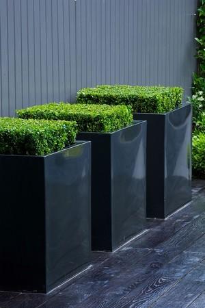 Les pots en hauteur surdimensionnés sont caractéristiques des jardins modernes: pour en savoir plus sur ce style de jardin, lisez l'article sur le blog!