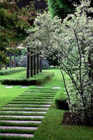 Découvrez le style de jardin contemporain, comment donner ce style à votre jardin? Lisez l'article.