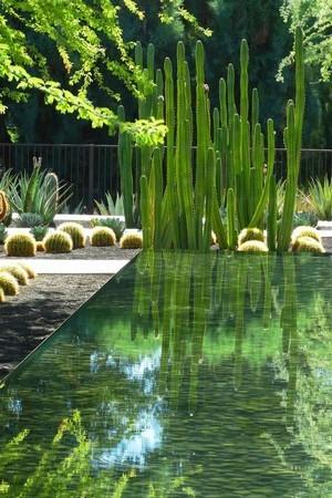 Jardin et piscine de style moderne mexicain: idéal pour le sud de la France. Découvrez tout sur les jardins minimalistes modernes: lisez l'article du blog!