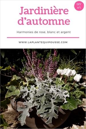 DIY tuto: composition et réalisation d'une jolie jardinière d'automne dans les tons rose, gris et blanc.