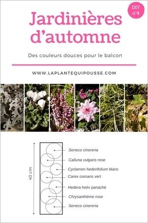 DIY: Modèle plan de jardinière d'automne à réaliser soi-même. Lisez l'article pour en savoir plus!
