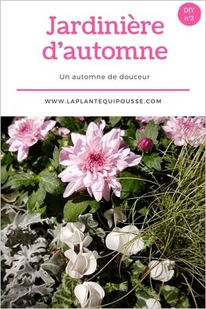 Tuto DIY: modèles de jardinières d'automne avec liste des plantes: lisez l'article pour en savoir plus!