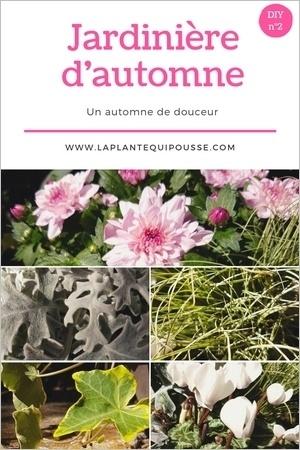 DIY: liste des fleurs d'automnes pour composer une belle jardinière d'automne selon ce modèle. Lisez l'article pour le découvrir!
