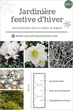 Idée de DIY pour une jardinière de fête avec des fleurs blanches et des feuillages gris argent, climat doux