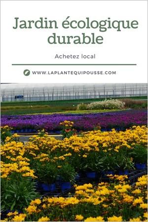 Jardin écologique durable: conseils pour acheter et choisir des plantes françaises produites localement.