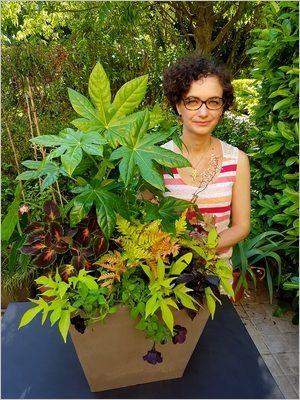 DIY Composer une jardinière d'été tropicale et luxuriante; idées de plantes vivaces colorées aux feuillages persistants