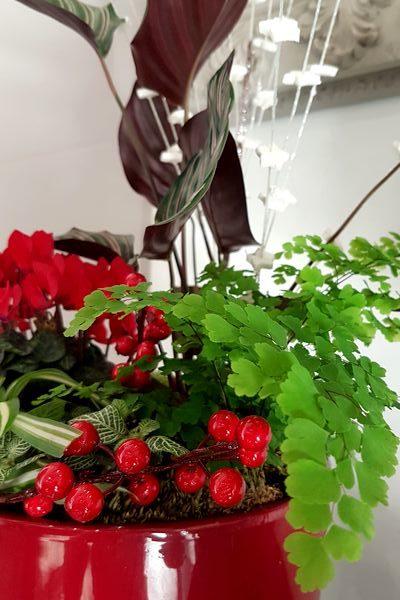 9 conseils d'entretien de compositions de plantes vertes et fleuries d'intérieur