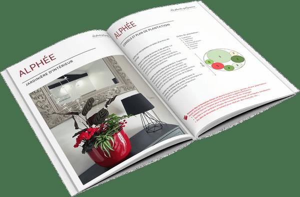 Idée DIY modèle de jardinière d'intérieur