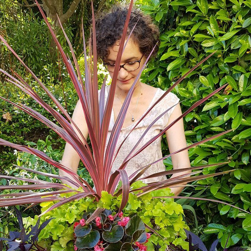 Amenager et planter des jardinières pots et bacs colorés sur des balcons et terrasses