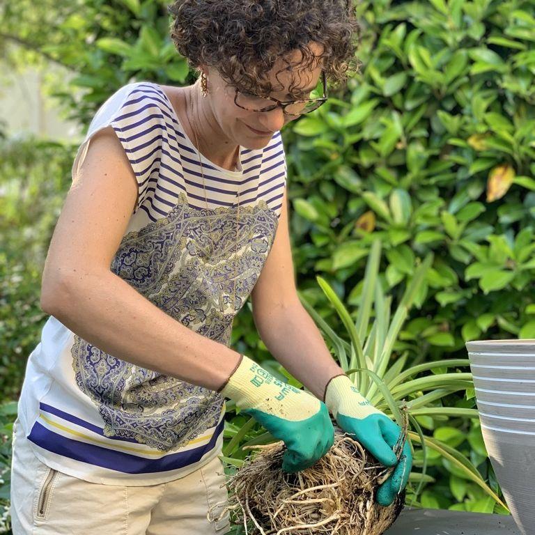 Services de jardinage, entretien de jardinières 30 et 34