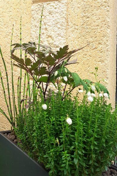 DIY jardinière style contemporain (pour homme, fête des pères)