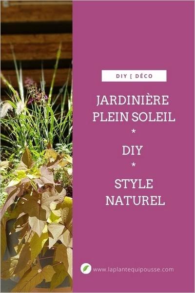 DIY jardinière plein soleil - idée de composition de plantes vivaces et fleurs annuelles