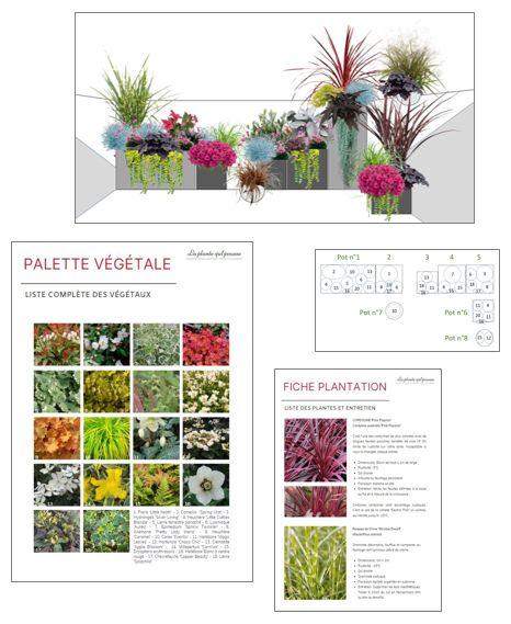 Conception aménagement et coaching jardin, balcon, terrasse en ligne