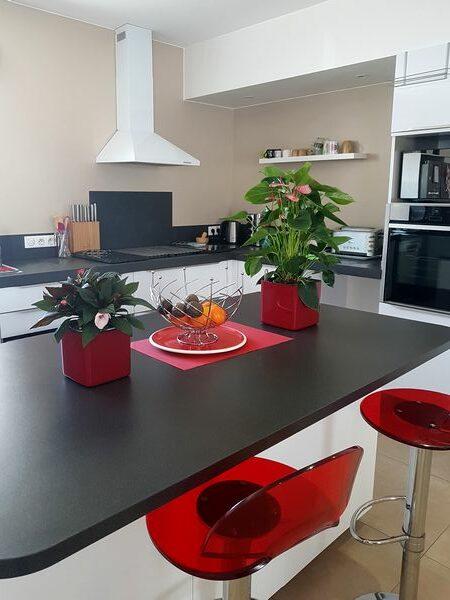 Cuisine contemporaine avec plantes fleuries dans des pots rouges modernes à réserve d'eau